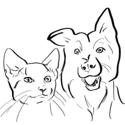 Pet Portraits by Cass and Brie Art